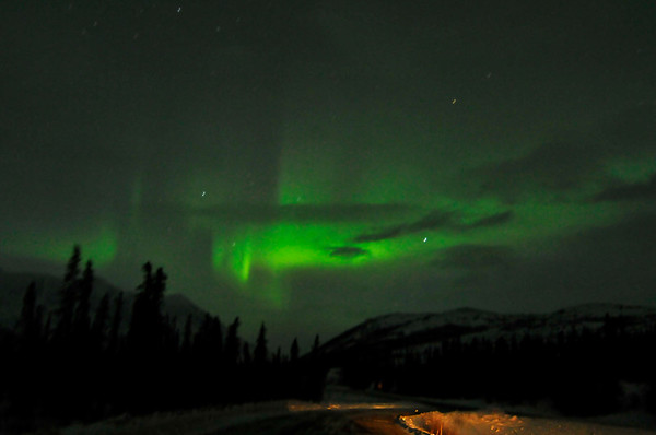 Northern Lights/ Aurora - Cantwell - Alaska - USA