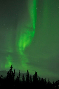Northern Lights / Aurora - Alaska - USA