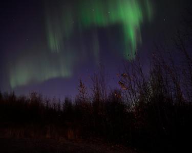 Aurora Borealis - Palmer - Alaska - USA