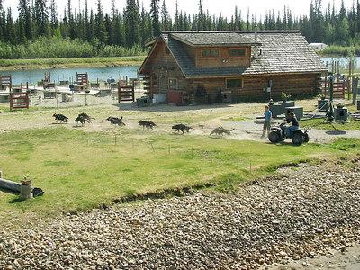 Touring Alaska in an RV