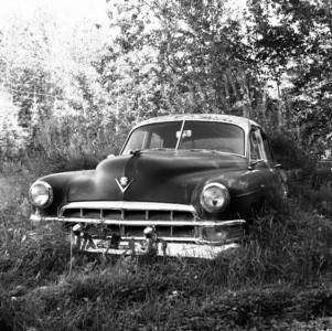 Car - Classic - Cadillac - Transportation - Old Glenn Highway - Butte - Alaska - USA