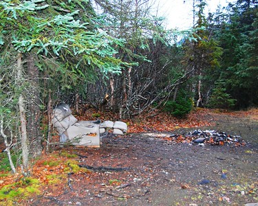 Camping Alaska Style - Alaska