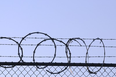 Barbed Wire - Anchorage - Alaska