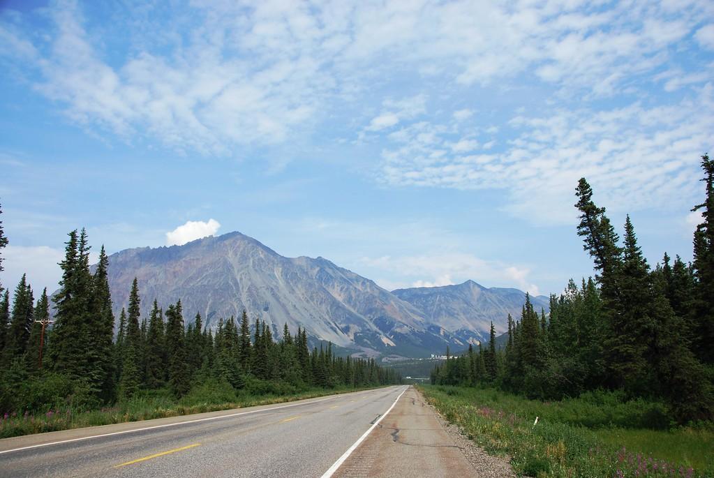 Richardson Highway near Fairbanks - Alaska - USA