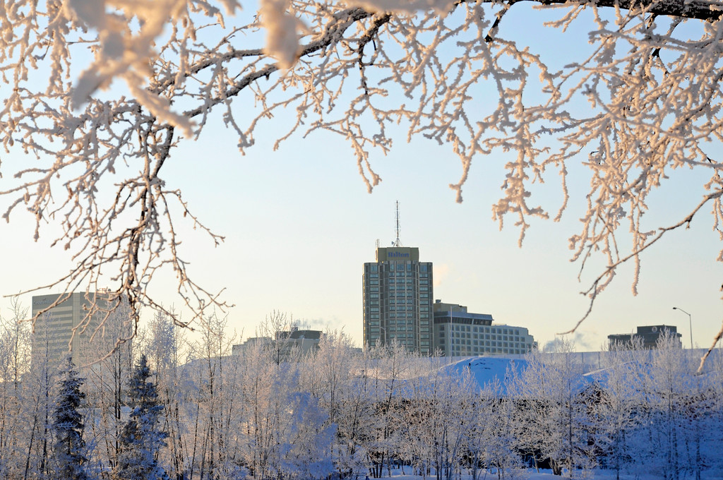 Hilton Hotel - Downtown - Hoarfrost - Alaska Winter - Anchorage - Alaska - USA