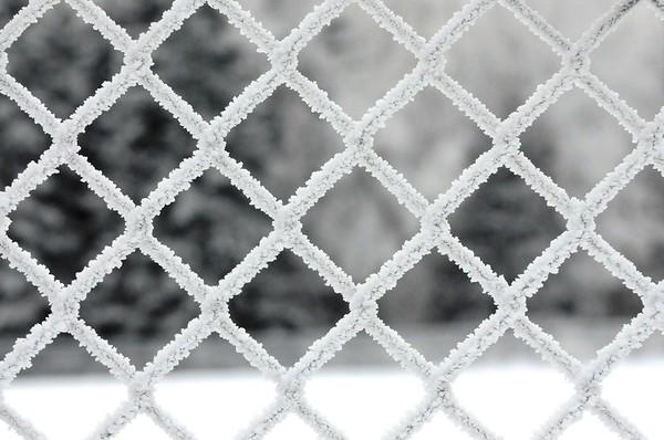 Hoarfrost on Fence - Alaska Winters - Anchorage - Alaska - USA