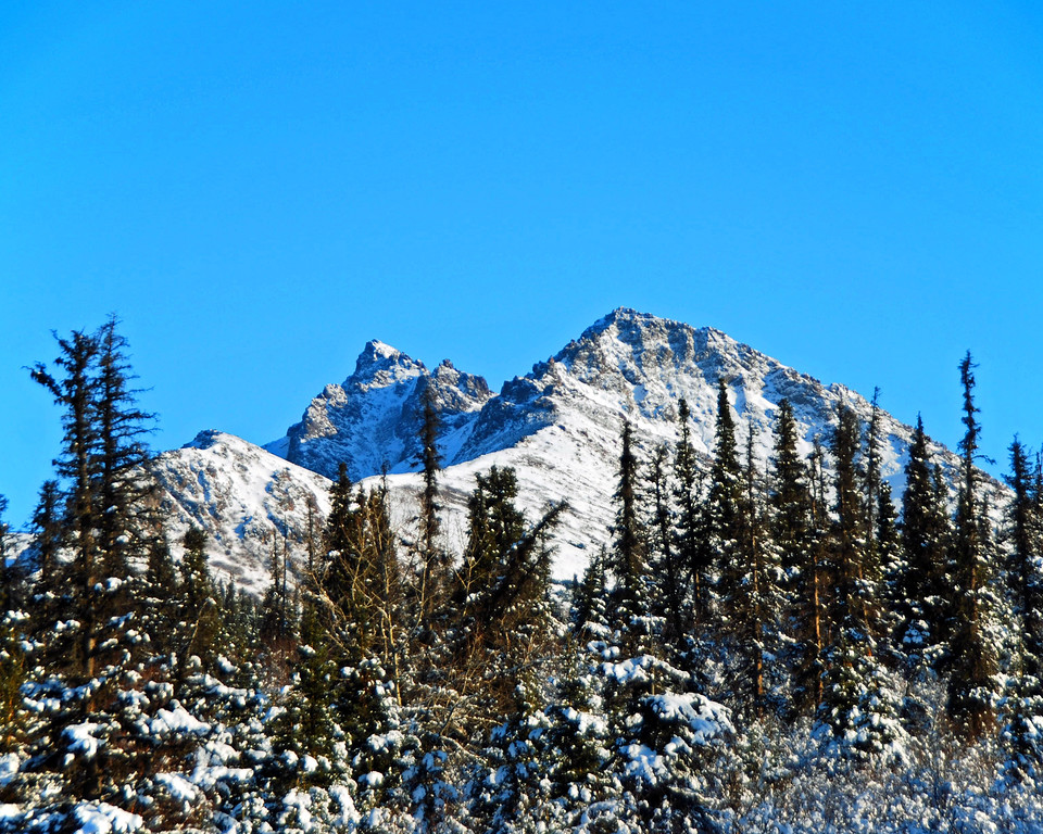 Snowy Mountain Top - Anchorage - Alaska