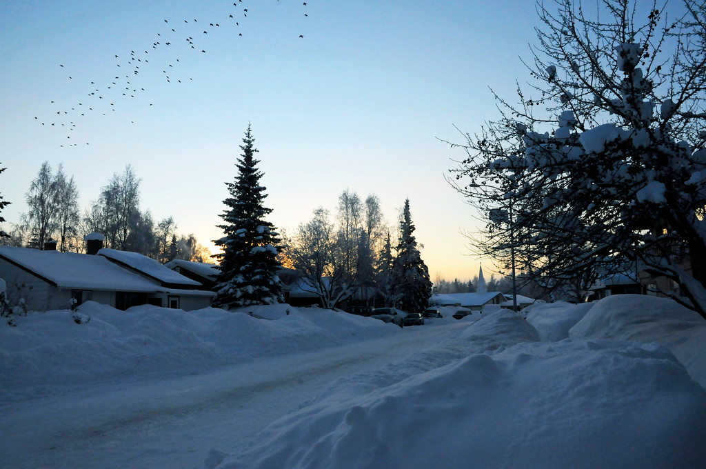 Snowy Neighborhood Street - Alaska Winter - Anchorage - Alaska - USA