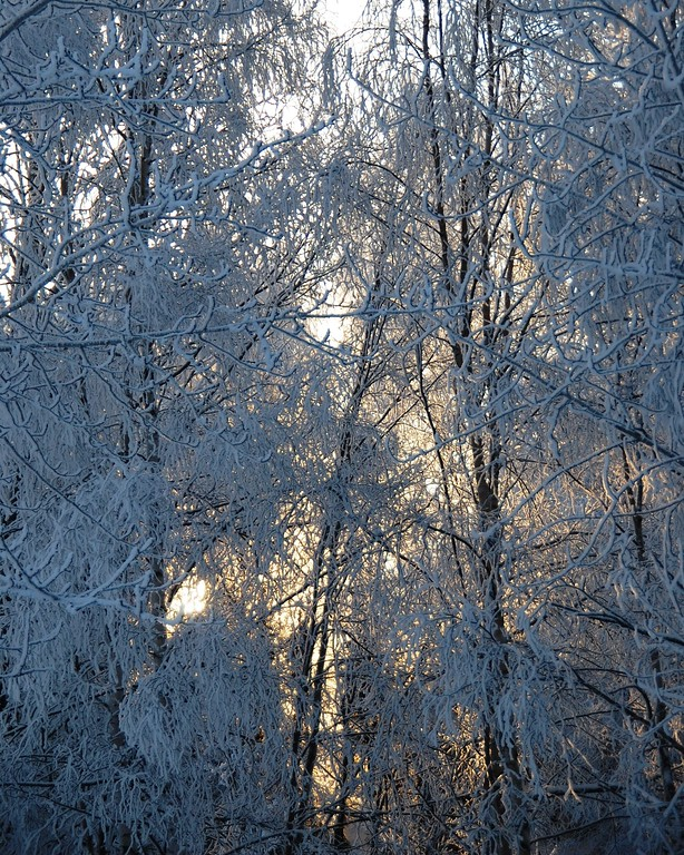 Anchorage - Alaska