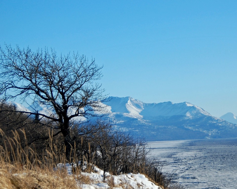 Kincaid Park - Anchorage - Alaska