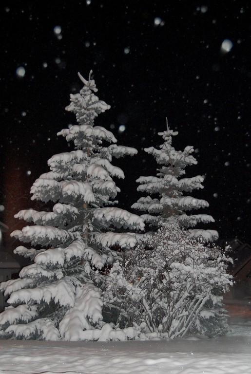 Anchorage - Alaska