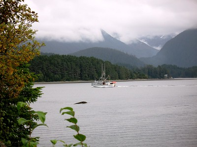 Sitka - Southeast - Alaska - USA
