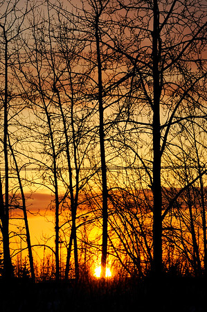 Golden Sunset - Merrill Field - Anchorage - Alaska - USA