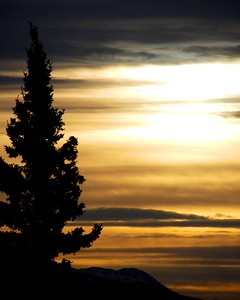 Sunset - Golden - Anchorage - Alaska  - USA