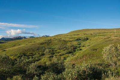 Thursday July 20th - Denali National Park-48-2