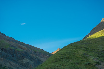Thursday July 20th - Denali National Park-28-2