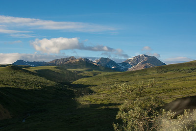 Thursday July 20th - Denali National Park-42-2