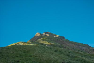 Thursday July 20th - Denali National Park-29-2