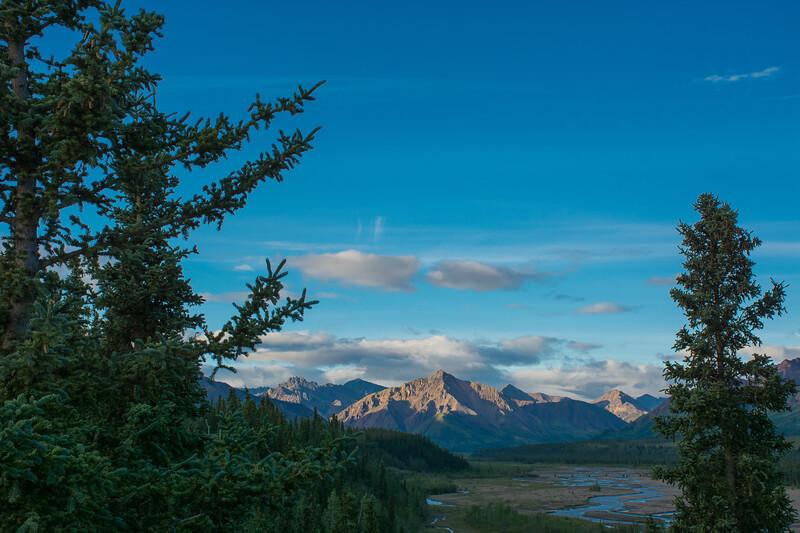 Thursday July 20th - Denali National Park-22-2