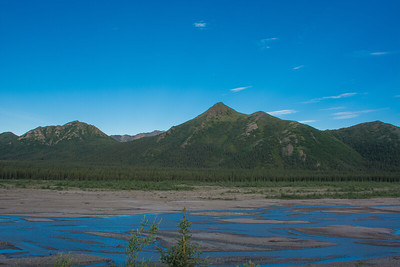 Thursday July 20th - Denali National Park-15-2