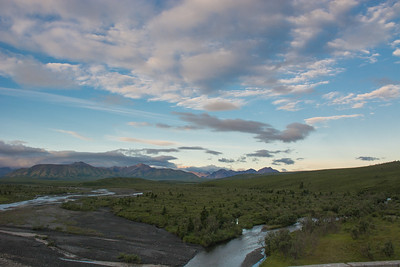 Thursday July 20th - Denali National Park-8-2