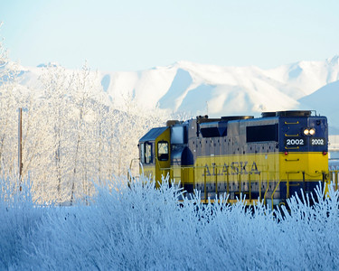 Alaska Railroad - Hoarfrost - Alaska Winter - Anchorage - Alaska - USA
