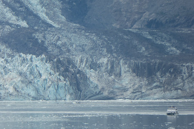 Tuesday July 25th - Glacier Bay National Park-106