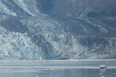 Tuesday July 25th - Glacier Bay National Park-106