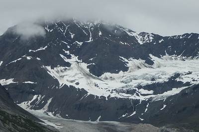 Tuesday July 25th - Glacier Bay National Park-113