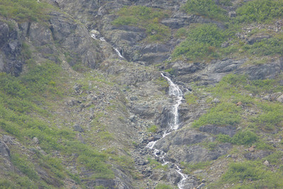 Tuesday July 25th - Glacier Bay National Park-54