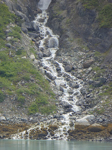 Tuesday July 25th - Glacier Bay National Park-62