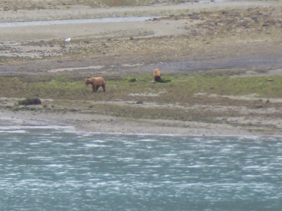 Tuesday July 25th - Glacier Bay National Park-9