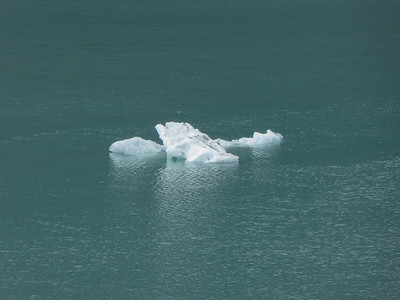 Tuesday July 25th - Glacier Bay National Park-81