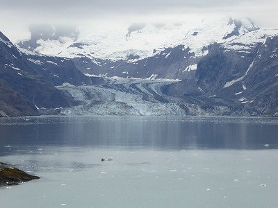 Tuesday July 25th - Glacier Bay National Park-83