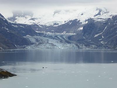 Tuesday July 25th - Glacier Bay National Park-83