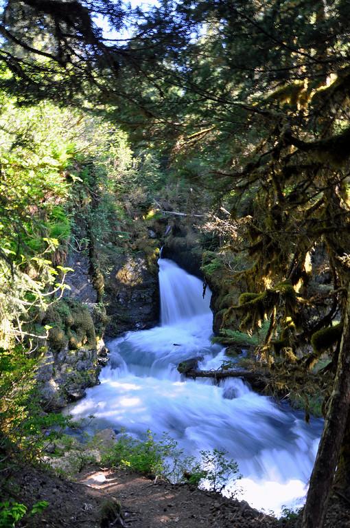 Virgin Creek Falls - Girdwood - Alaska - USA