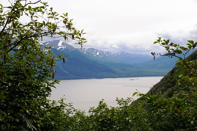 Falls Creek Trail - Turnagain Arm - Anchorage - Alaska - USA