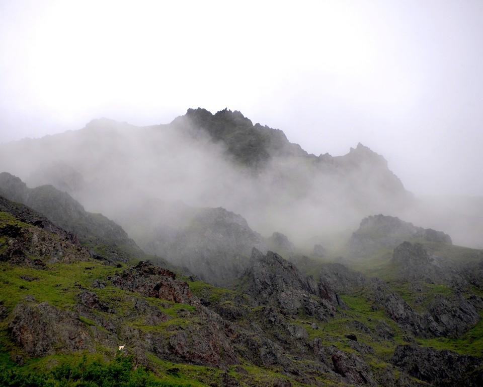 Falls Creek Trail - Misty MountainTop - Turnagain Arm - Anchorage - Alaska - USA