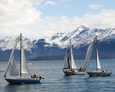 Boats - Sail Boats - Transportation - Homer Spit - Homer - Kenai Peninsula - Alaska - USA