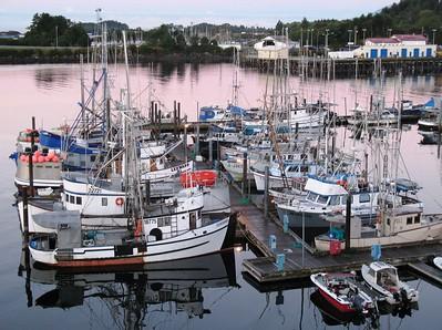 Boat - Transportation - Boat Harbor - Sitka - Alaska - USA