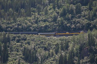 Wednesday July 19th - Denali National Park-20