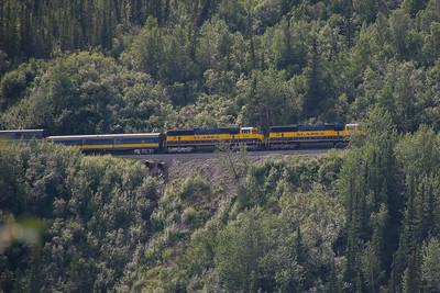Wednesday July 19th - Denali National Park-21