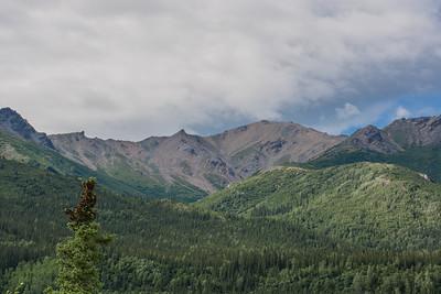 Wednesday July 19th - Denali National Park-5