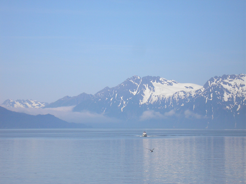 The mountian range comes right down to the harbor.
