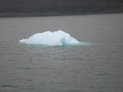See the blue color, it is because the ice absorbs all of the other colors and reflects blue.