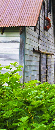 """Deserted Petersburg building with lime greeen weed foreground. SEE ALSO:    <a href=""""http://www.blurb.com/b/893025-north-to-alaska"""">http://www.blurb.com/b/893025-north-to-alaska</a>"""