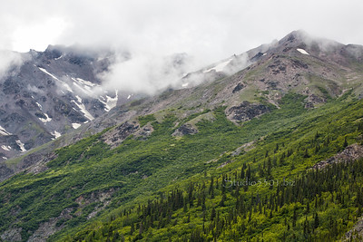 view Alaska near girdwood landscape 0009