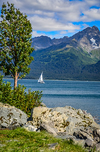 View from Seward Waterfront Park