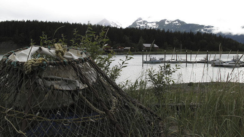 On the way back from Extreme Dreams Art Gallery we stopped again at Letnikof Cove to take in the Chilkat Mountains and obsolete cannery. King-crab pot in foreground.