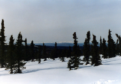 Snow Shoeing in the White Mountains north of Fairbanks